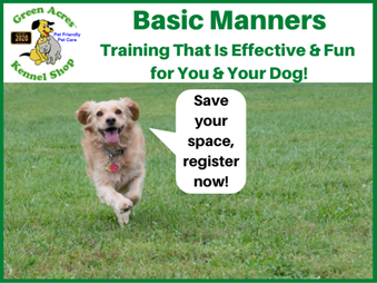 Basic Manners Promotion Image