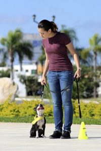 woman training dog in class